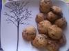 ciasteczka-pelnoziarniste